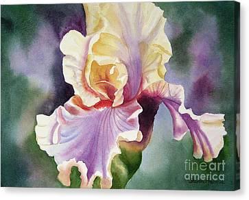 Orange And Purple Iris Canvas Print by Sharon Freeman