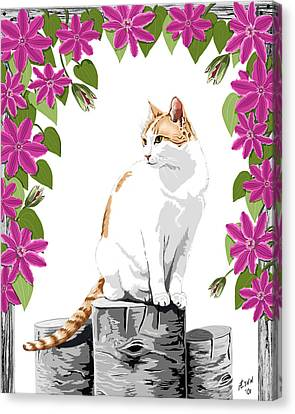 Orange And White Cat And Clematis Canvas Print by Artellus Artworks