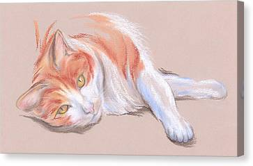 Orange And White Tabby Cat With Gold Eyes Canvas Print