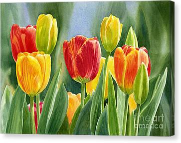 Orange And Yellow Tulips With Background Canvas Print by Sharon Freeman