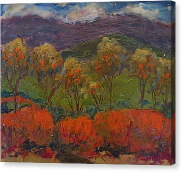 Orange Bushes Canvas Print