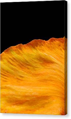 Orange Edge Canvas Print