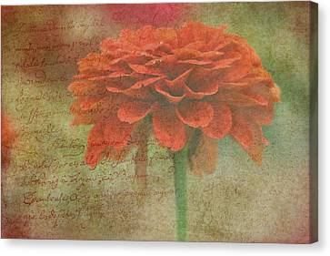 Orange Floral Fantasy Canvas Print by Kay Novy