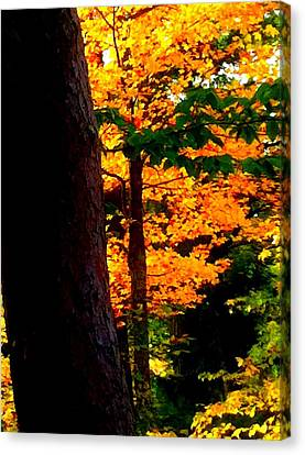 Canvas Print featuring the photograph Orange Foliage by Denyse Duhaime