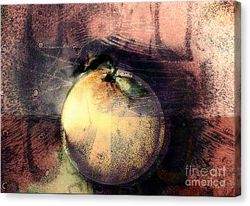 Canvas Print featuring the digital art Orange by Gabrielle Schertz