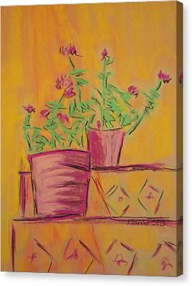 Orange Geraniums Canvas Print by Marcia Meade
