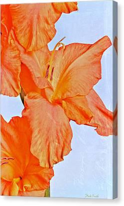 Orange Glad Canvas Print