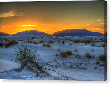 Canvas Print featuring the photograph Orange Glow by Kristal Kraft