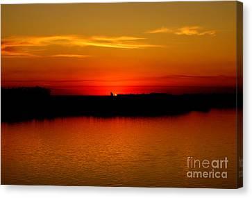 Orange Glow Canvas Print by Lori Tordsen