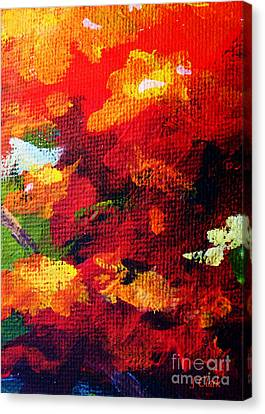 Orange Canvas Print by John Clark