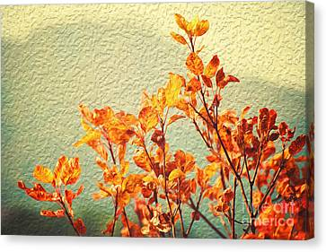 Canvas Print featuring the photograph Orange Leaves by Yew Kwang
