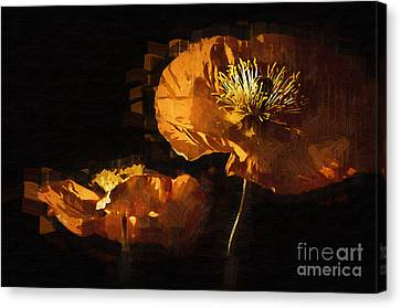 Orange Poppies Two Canvas Print by Kirt Tisdale