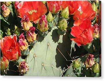 Canvas Print featuring the photograph Orange Prickly by Dick Botkin