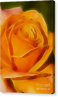 Orange Rose 6291-fractal Canvas Print by Gary Gingrich Galleries
