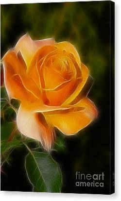 Orange Rose 6292-fractal Canvas Print by Gary Gingrich Galleries