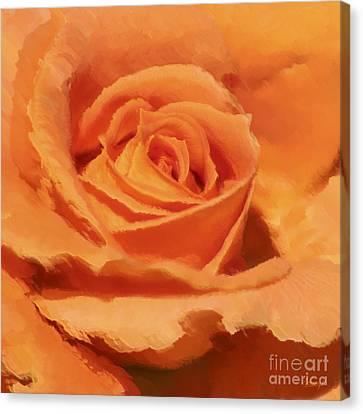 Interior Still Life Canvas Print - Orange Rose by Johnny Hildingsson