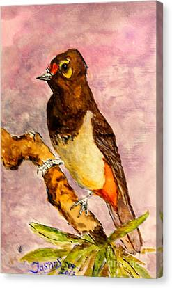Canvas Print featuring the painting Orange-spotted Bulbul by Jason Sentuf