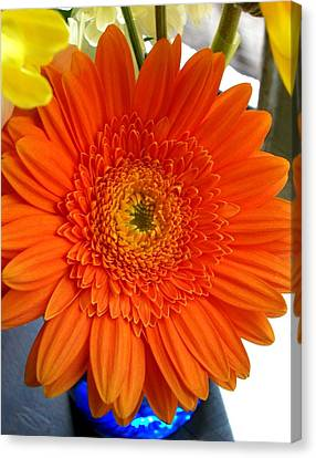 'orange Sun' Canvas Print