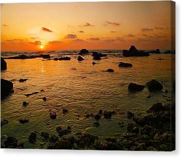 Canvas Print featuring the photograph Orange Sunset by Meir Ezrachi