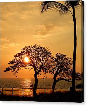 Orange Sunset Canvas Print by Pamela Walton