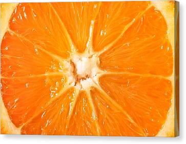Orange  Canvas Print by Tom Gowanlock