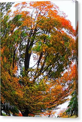 Orange Tree Swirl Canvas Print