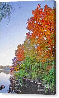 Orange Trees Canvas Print by Nur Roy
