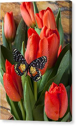 Orange Tulips And Butterfly Canvas Print by Garry Gay
