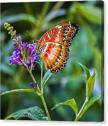 Orange White And Black Stripes On Purple Canvas Print by Karen Stephenson