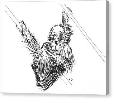 Monkey Canvas Print - Orangutan Baby 2 by Go Van Kampen