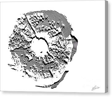 Canvas Print featuring the photograph Orbits by Jessie Parker