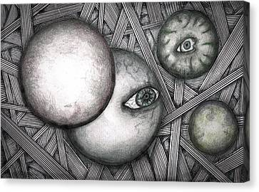 Orbs 2013 Canvas Print by Dan Twyman