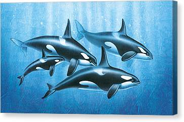 Orca Group Canvas Print by JQ Licensing