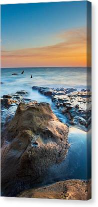 Orcas Triptych 2 Canvas Print by Robert Bynum