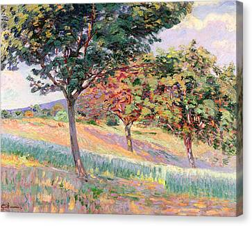 Orchard At St Cheron Canvas Print by Jean Baptiste Armand Guillaumin