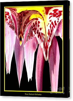 Orchid Abstract Canvas Print by Rose Santuci-Sofranko