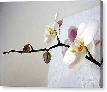 Canvas Print featuring the photograph Orchid Coming Out Of Painting by Barbara Yearty