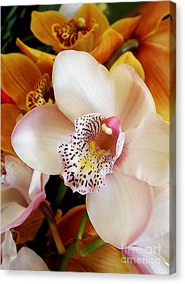 Golden Pink Orchid Canvas Print - Orchid Delight         by Kaye Menner