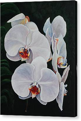 Orchid Fever Canvas Print