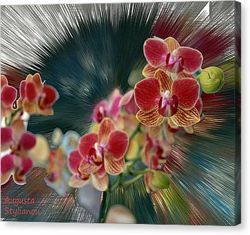 Orchid Flower Canvas Print by Augusta Stylianou