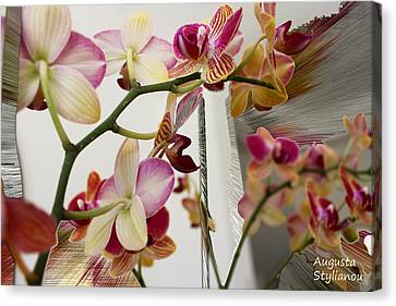 Orchid Flowers Canvas Print by Augusta Stylianou