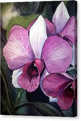 Orchid Canvas Print by Irina Sztukowski