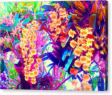 Orchid Splash Canvas Print by Ann Johndro-Collins