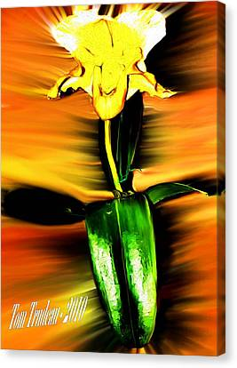 Culinary Canvas Print - Orchid by Tommi Trudeau