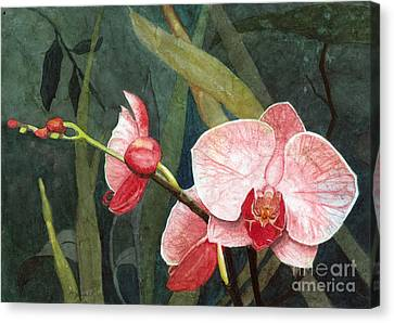 Canvas Print featuring the painting Orchid Trio 2 by Barbara Jewell