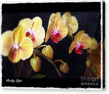Orchids Arise Canvas Print