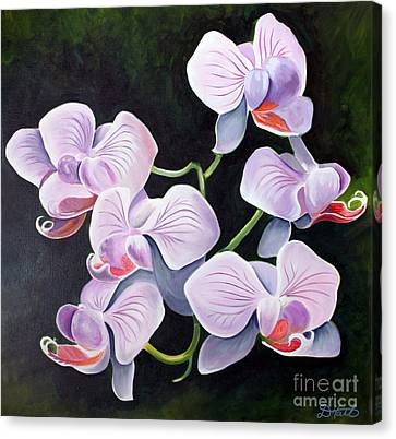 Orchids II Canvas Print by Debbie Hart