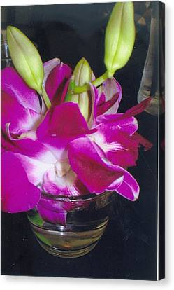 Orchids In A Glass Canvas Print