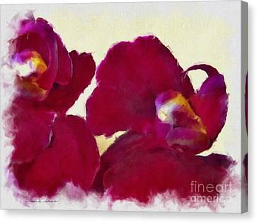 Orchids No. 4 Canvas Print