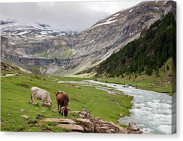 Ordesa National Park Canvas Print by Bob Gibbons